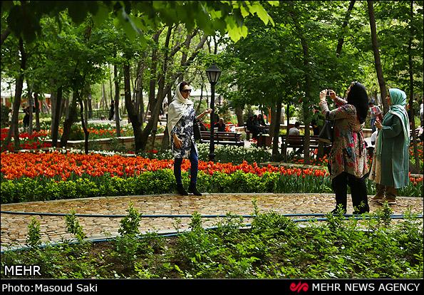 Tulip Flower Festival in Tehran