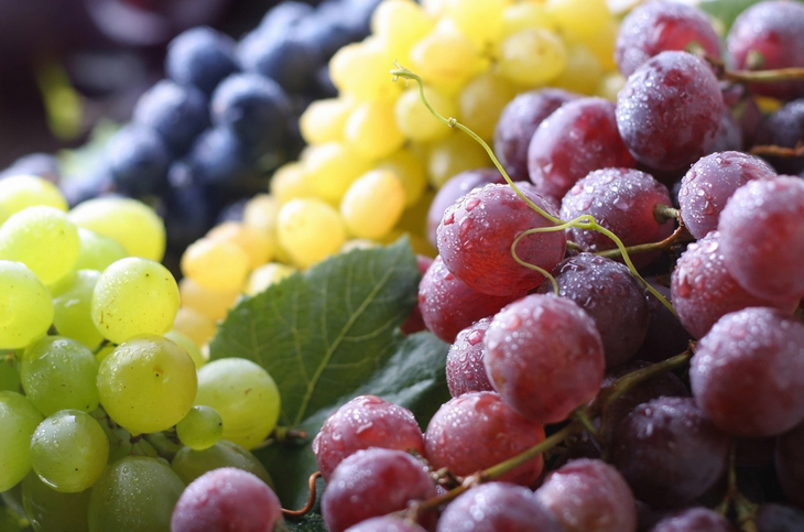 Alzheimer's Caused By Over-The-Counter PPIs, Study Reveals Two Cups Of Grapes A Day May Keep The Disease At Bay. Researchers Plan To Expand The Scope Of Their Research